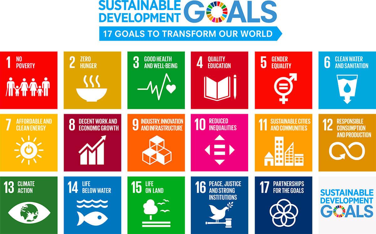 (参考) 国連により推進・整理されている2030年に向けた持続可能な開発目標(17の目標)